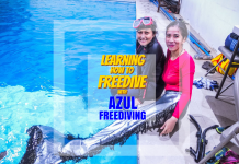 Learning How to Freedive with Azul Freediving - https://thejerny.com