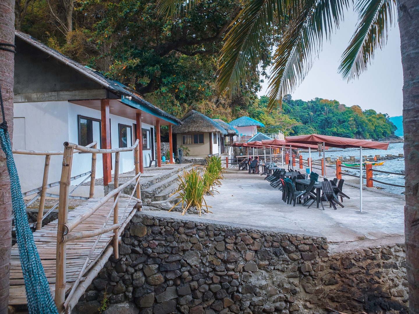 Bus Stop Dive Resort Diving Experience With School Of Jacks In Batangas Marine Sanctuary