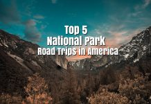 Top 5 National Park Road Trips In America