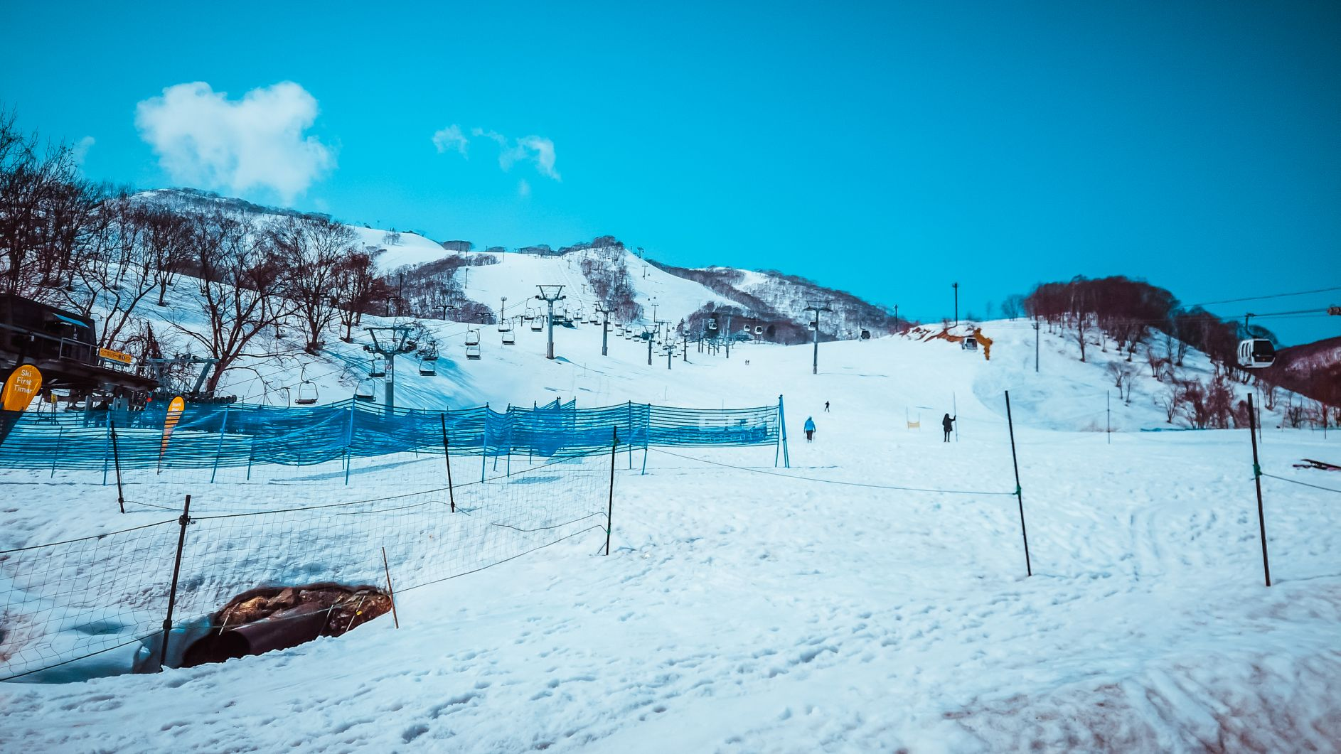 Nest at the Trees: Where You Must Stay in Niseko