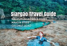 siargao-travel-guide-magpupungko-rock-pools-and-maasin-river-tour-coconut-road