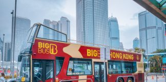 guide-to-hop-on-hop-off-bus-tour-in-hong-kong
